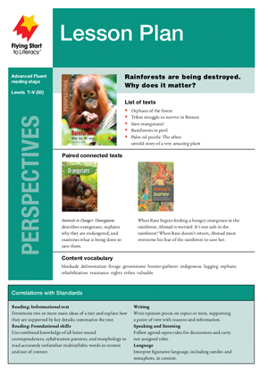 , Perspectives Lesson Plan
